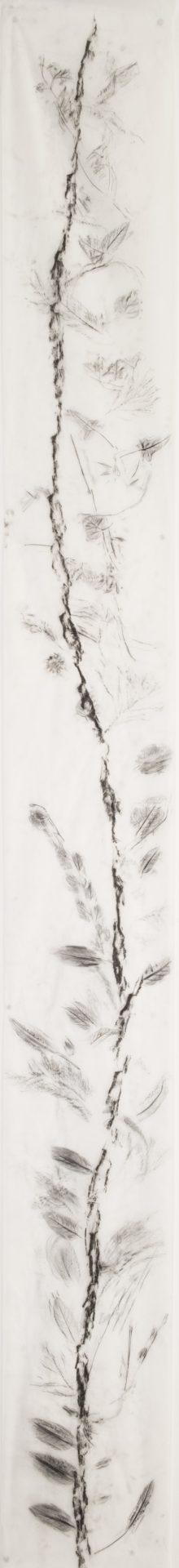 Scala Naturale<br>MMG16<br>misure: 33 x 300 cm<br>tecnica: Carboncino su carta giapponese<br>anno: 2018<br><br>DISPONIBILE